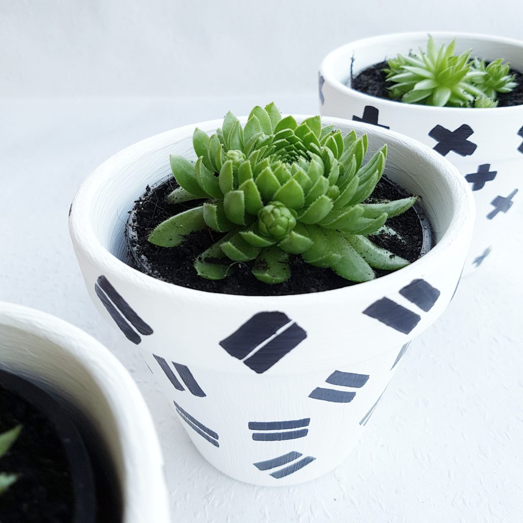 DIY Blumentöpfe in Schwarz-Weiß