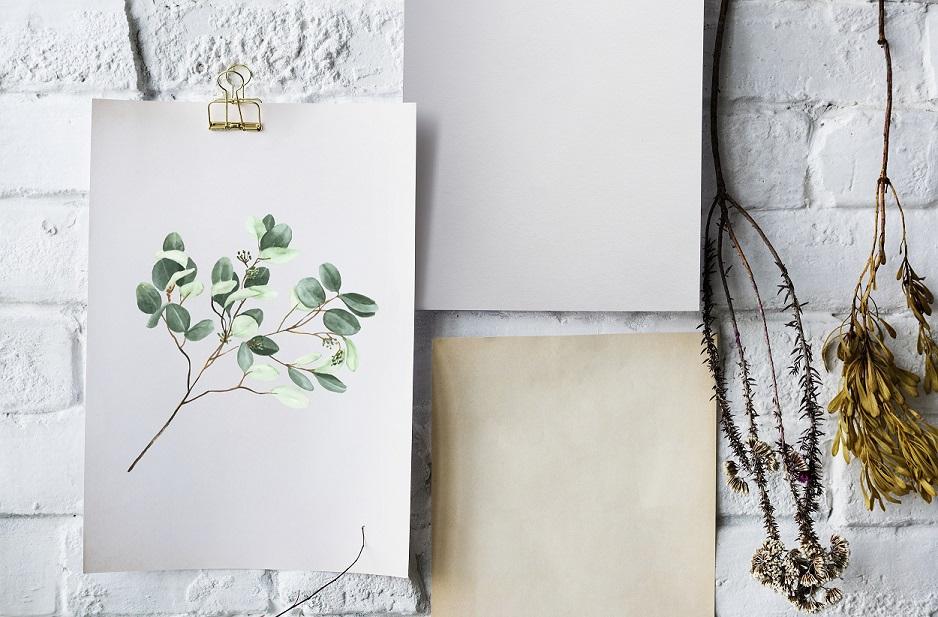 Eukalyptus-Zweig Freebie